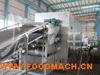 脱水蔬菜干燥专用生产线