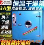 厂家生产优质3A恒温烘箱 鼓风干燥箱 实验烘箱