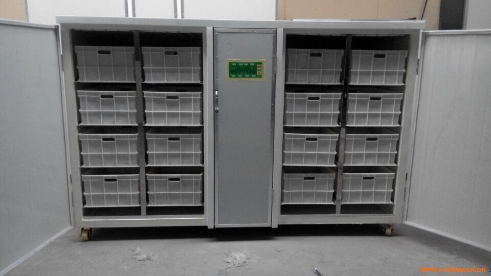 ds-200全自动豆芽机,生豆芽设备