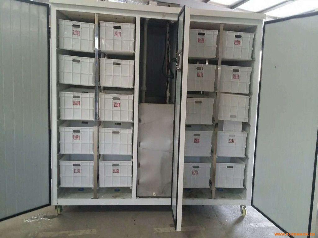 ds-600豆芽机械厂家,生产豆芽设备,大型商用豆芽机